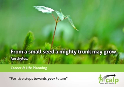 Quote-21--From-a-small-seed